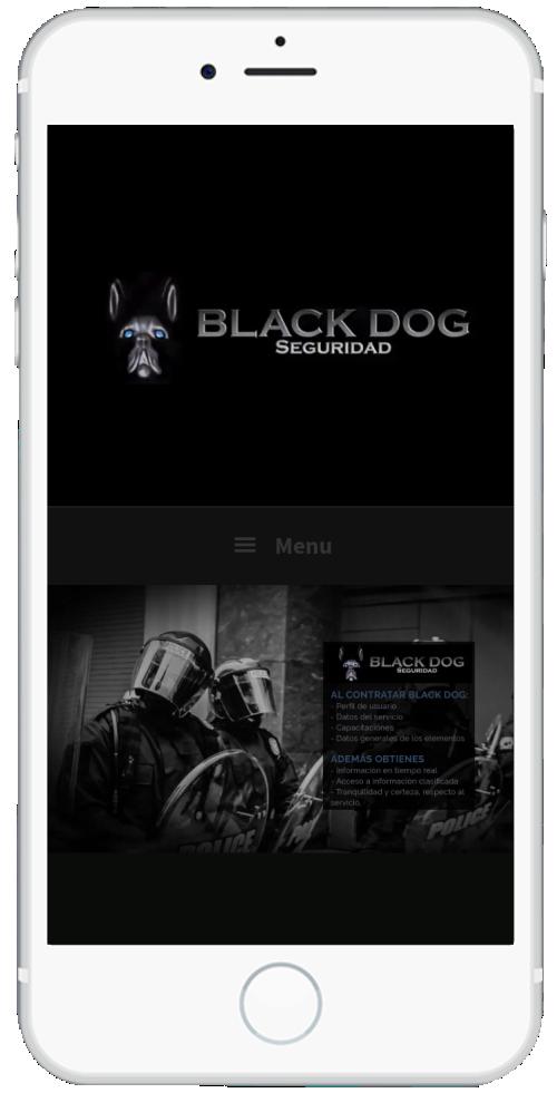 fernandovazquezperez.com BlackDogSeguridad.com